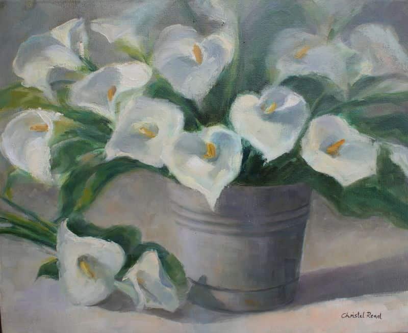 Arum Lilies in Bucket