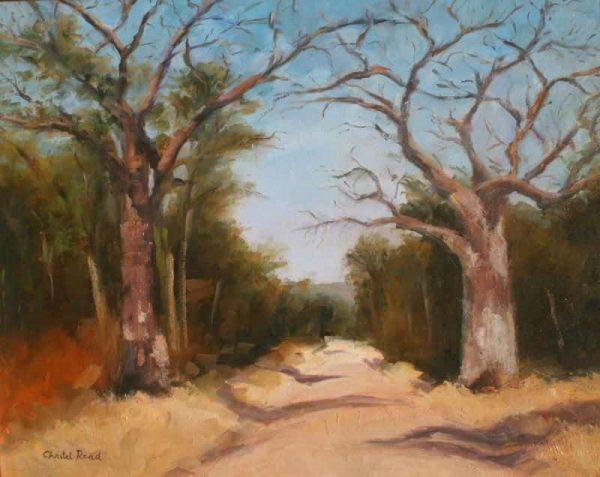 Baobabs