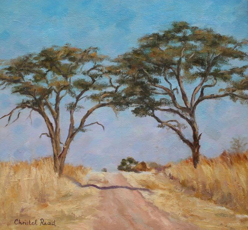 Bushveld Drive