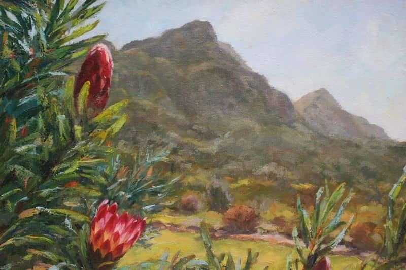 Kirstenbosch Proteas