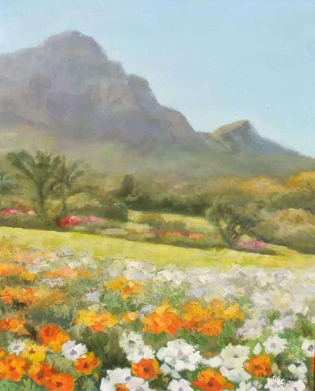 Kirstenbosch Spring Daisies