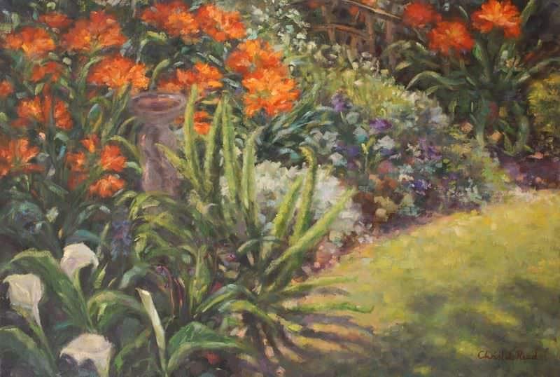 Spring Clivias